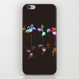 Rainbow Flamingos iPhone Skin