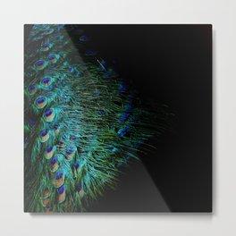 Peacock Details Metal Print