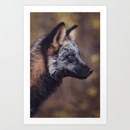 Cross Fox Art Print