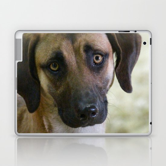 Hound Pup Laptop & iPad Skin