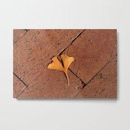 Ginkgo Leaf on the Sidewalk Metal Print