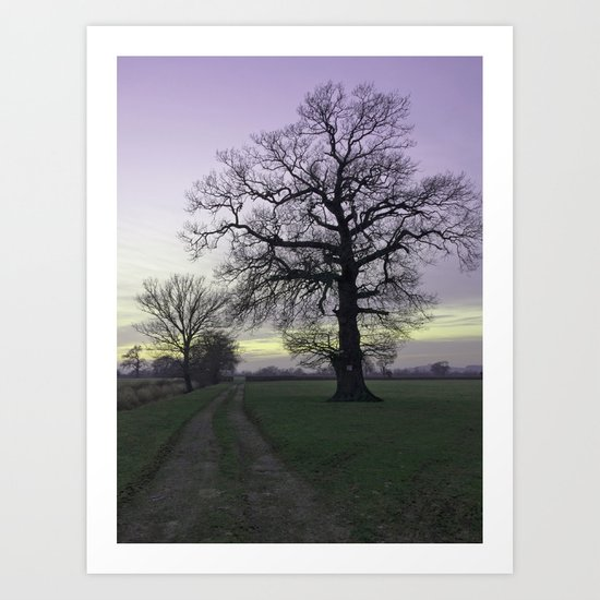 evening light... Art Print