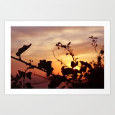 The Sun Peeks Through Art Print