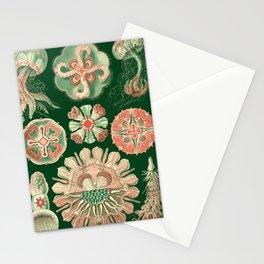 Ernst Haeckel Discomedusae Jellyfish Stationery Cards