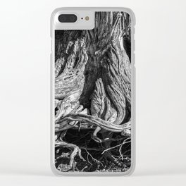 Gnarled Ancient Tree Roots Clear iPhone Case