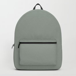 Dark Gray Solid Color, Pairs to Benjamin Moore Heather Gray 2139-40 Accent to Tucson Teal Backpack