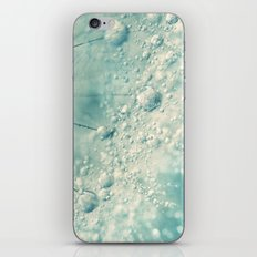 Dandy Rain iPhone & iPod Skin