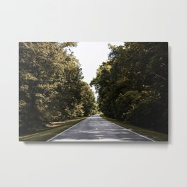 Natchez Trace parkway in Florence Alabama Old Mammoth Road Metal Print