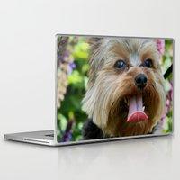 yorkie Laptop & iPad Skins featuring Happy Yorkie by IowaShots