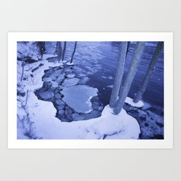 Water And Ice Surround Young Trees Art Print