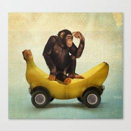 Chimp my Ride Canvas Print