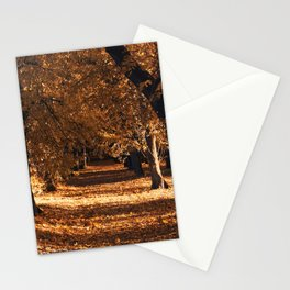 Linden Alley 3 Stationery Cards