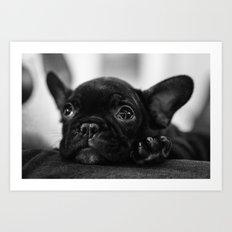 Looking Cute Art Print