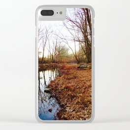 Nina Clear iPhone Case