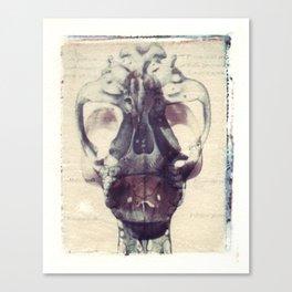 X Ray Terrestrial No. 1 Canvas Print