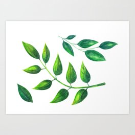 Sumer Leaves Art Print