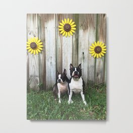 BT Sunshine Metal Print