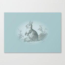 Bunny Rabbit {teal} Canvas Print