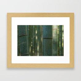 Arashiyama Bamboo Framed Art Print
