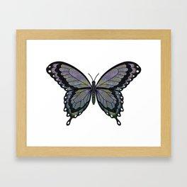 dusky Willow (Wilgia dusk) fantasy butterfly Framed Art Print