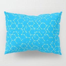 Atom boy Pillow Sham