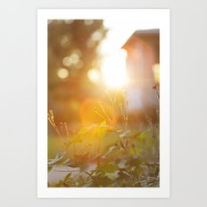 golden light Art Print