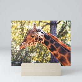Baringo Giraffe Mini Art Print