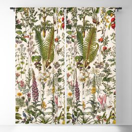 Adolphe Millot - Plantes Medicinales B - French vintage poster Blackout Curtain