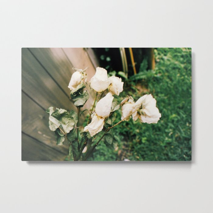 Like Petals Metal Print
