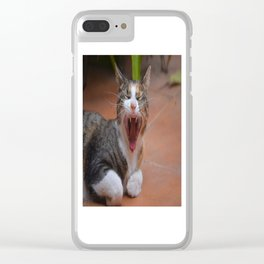 Liza the cat with a big smile Clear iPhone Case