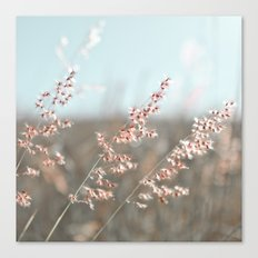 Pink Breeze Canvas Print