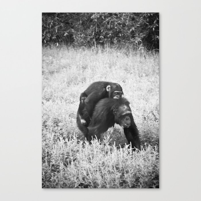 Monkey and Me Canvas Print