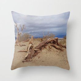 Death Valley II Throw Pillow