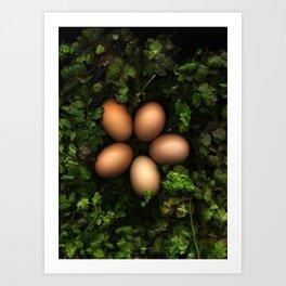 Eggs in a Green Nest Art Print