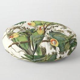 Carolina Parrot - John James Audubon's Birds of America Print Floor Pillow