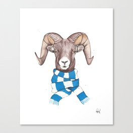 Chilly Sheep Canvas Print