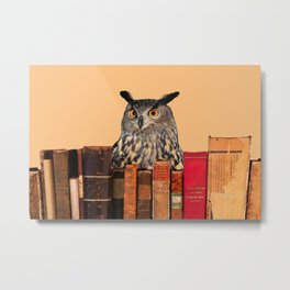 Old Books and Owl Metal Print
