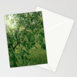 komorebi Stationery Cards
