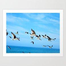 Fly Off Art Print