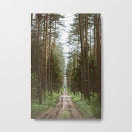 Fun road at the forest Metal Print