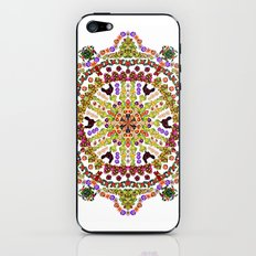Garden Path iPhone & iPod Skin
