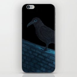 Raven Night iPhone Skin