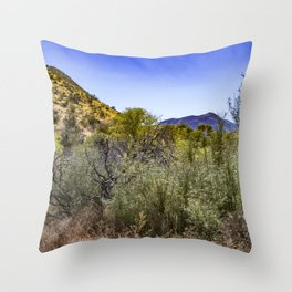 Fresh Green Plants Growing Near Underground Water by the Mountains in the Anza Borrego Desert Throw Pillow