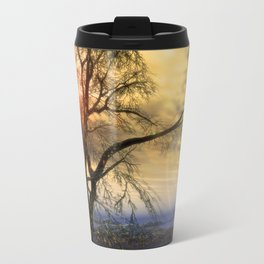 Tree in November sun Travel Mug