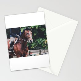 Warmblood Stationery Cards