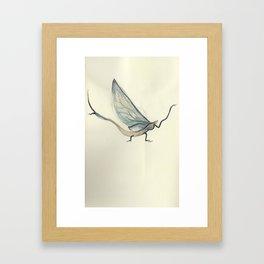 Mayfly Framed Art Print