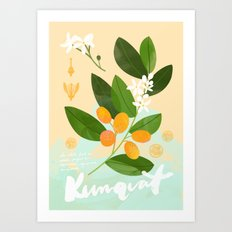 Botanical Diagram: Kumquat Art Print