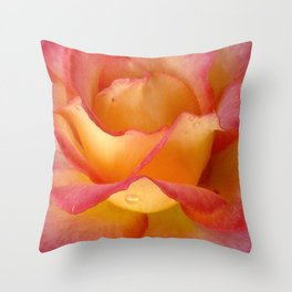 Dew Drop Fire Rose, 2012 Throw Pillow