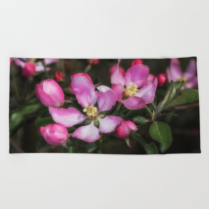 Pink Apple Blossoms Beach Towel