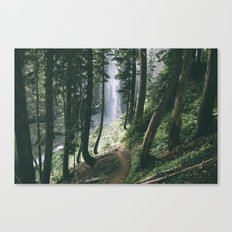 To The Falls Canvas Print